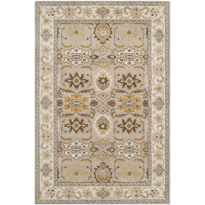 Cranmore Light Grey/Grey Area Rug Rug Size: 4 x 6
