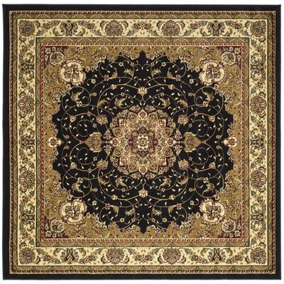 Ottis Black/Ivory Area Rug Rug Size: Square 8