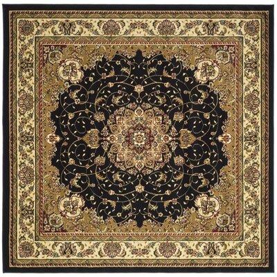 Ottis Black/Ivory Area Rug Rug Size: Square 6