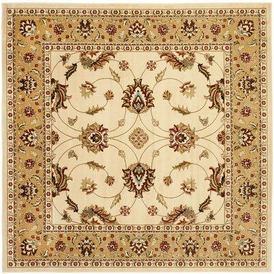 Ottis Ivory/Beige Area Rug Rug Size: Square 6'7