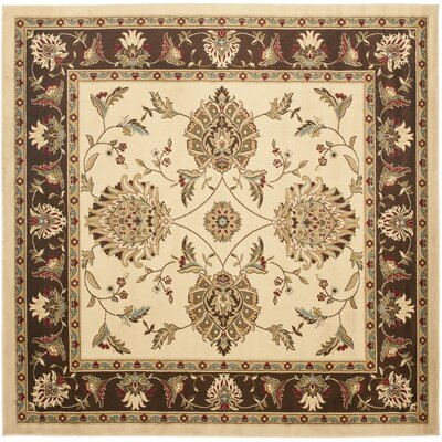 Ottis Ivory/Brown Area Rug Rug Size: Square 67