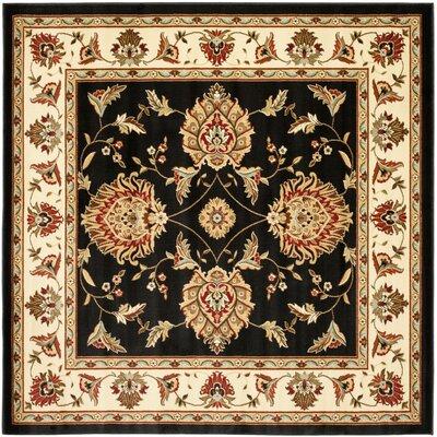Ottis Black/Ivory Area Rug Rug Size: Square 67
