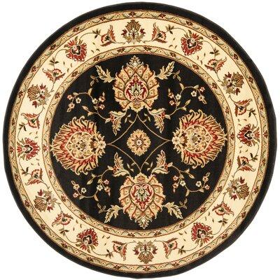 Ottis Black/Ivory Area Rug Rug Size: Round 53