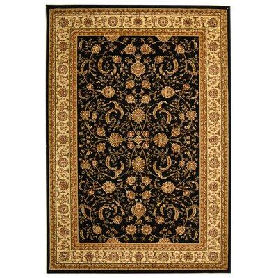 Ottis Black/Ivory Rug Rug Size: 4 x 6