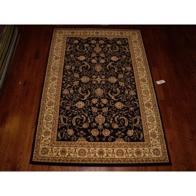 Ottis Black Area Rug Rug Size: Rectangle 4 x 6