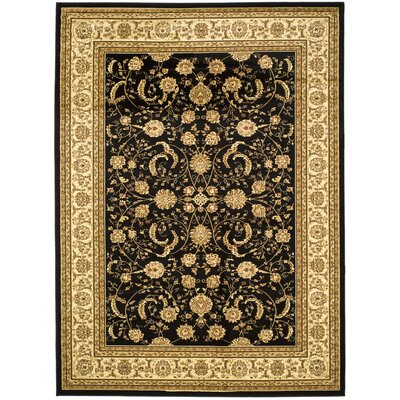 Ottis Black/Ivory Rug Rug Size: 9 x 12