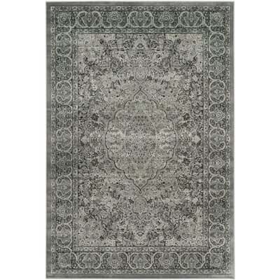 Patrick Light Gray/Anthracite Area Rug Rug Size: 53 x 76