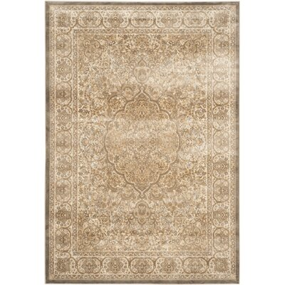 Patrick Mouse/Silver Area Rug Rug Size: 53 x 76