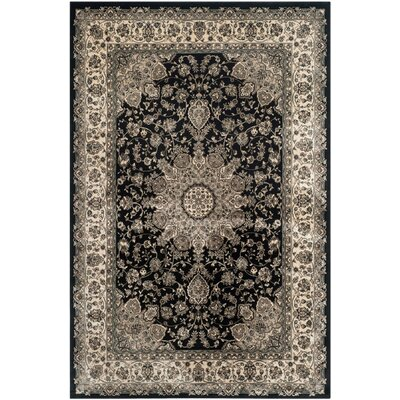 Petronella Black & Ivory Area Rug Rug Size: Rectangle 67 x 92