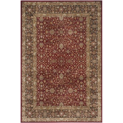 Petronella Red/Brown Area Rug Rug Size: 51 x 77