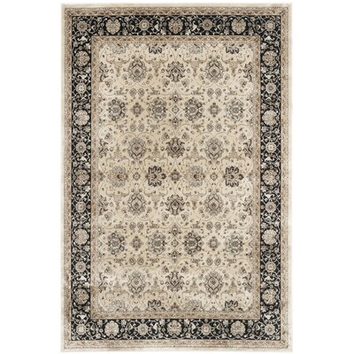 Petronella Ivory/Black Area Rug Rug Size: Rectangle 4 x 57