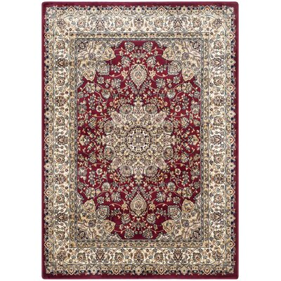 Petronella Red/Ivory Area Rug Rug Size: 8 x 11