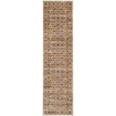 Petronella Ivory/Ivory Area Rug Rug Size: Runner 22 x 8