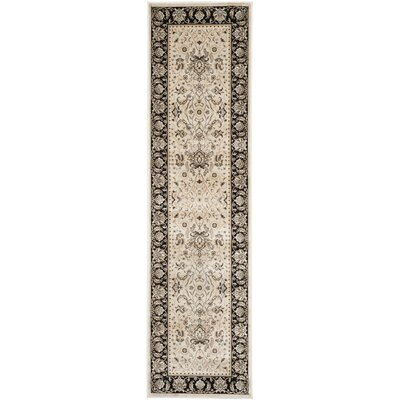 Petronella Ivory/Black Area Rug Rug Size: Runner 22 x 8