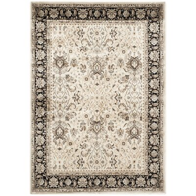 Petronella Ivory/Black Area Rug Rug Size: 51 x 77