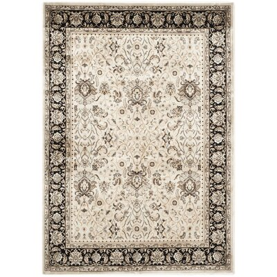 Petronella Ivory/Black Area Rug Rug Size: 67 x 92