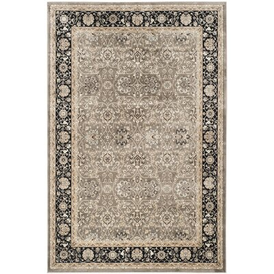 Petronella Gray & Black Area Rug Rug Size: Rectangle 51 x 77