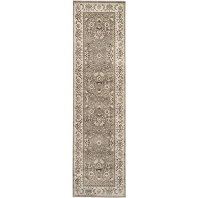 Petronella Gray/Ivory Area Rug Rug Size: Runner 22 x 8
