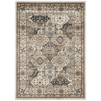 Petronella Ivory Area Rug Rug Size: Rectangle 8 x 11