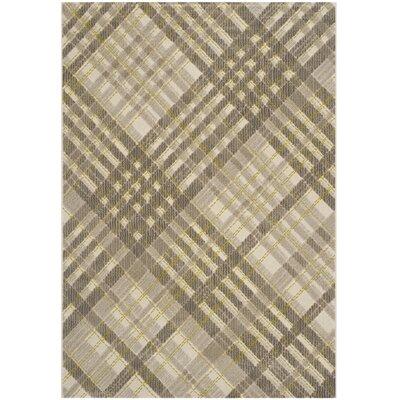 Philomena Grey / Dark Grey Plaid Rug Rug Size: 6 x 9