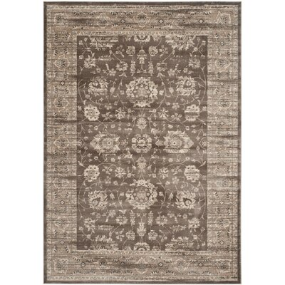 Rindge Brown/Ivory Area Rug Rug Size: Rectangle 67 x 92