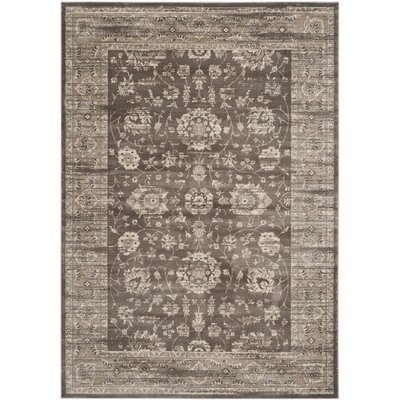 Rindge Brown/Ivory Area Rug Rug Size: Rectangle 8 x 11