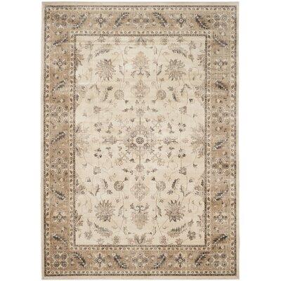 Rindge Stone / Caramel Oriental Rug Rug Size: 810 x 122