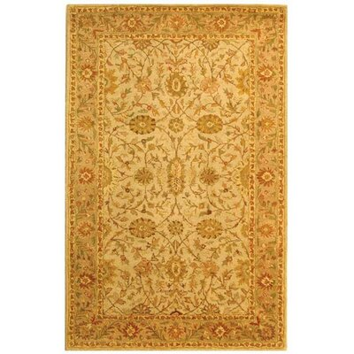 Dunbar Ivory/Light Green Area Rug Rug Size: Rectangle 6 x 9