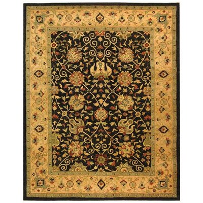 Dunbar Black Area Rug Rug Size: Rectangle 96 x 136