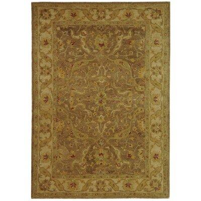 Dunbar Brown/Gold Area Rug Rug Size: 4 x 6