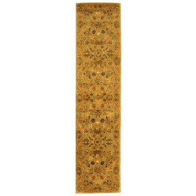 Dunbar Sage/Gold Area Rug Rug Size: Runner 23 x 16