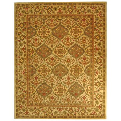 Dunbar Beige/Olive Area Rug Rug Size: Rectangle 5 x 8