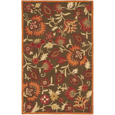 Bradwood Brown/Multi Area Rug