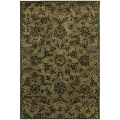 Dunbar Olive/Green Area Rug Rug Size: 5 x 8