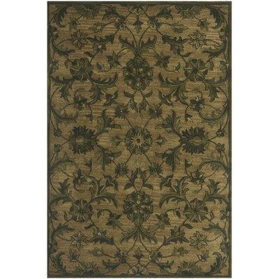 Dunbar Olive/Green Area Rug Rug Size: 4 x 6