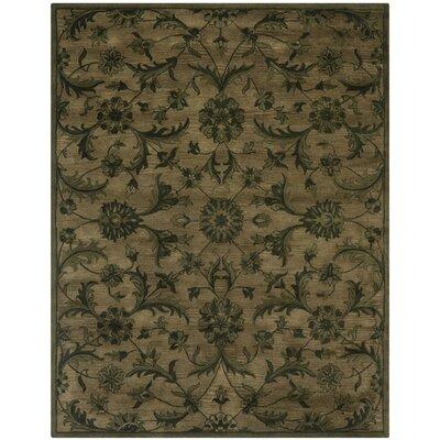 Dunbar Olive/Green Area Rug Rug Size: 76 x 96