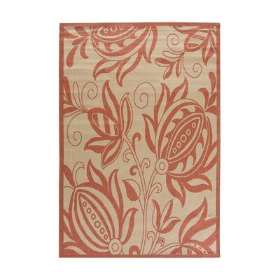 Octavius Natural / Red Outdoor Area Rug Rug Size: 53 x 77