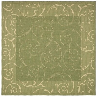 Alberty Indoor/Outdoor Maribelle Olive Area Rug Rug Size: Square 710