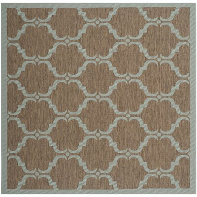 Octavius Brown/Aqua Indoor/Outdoor Area Rug Rug Size: Square 53