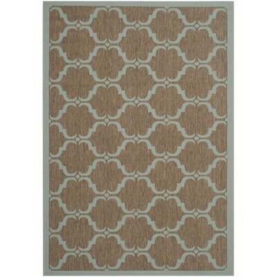 Octavius Brown/Aqua Indoor/Outdoor Area Rug Rug Size: Rectangle 67 x 96