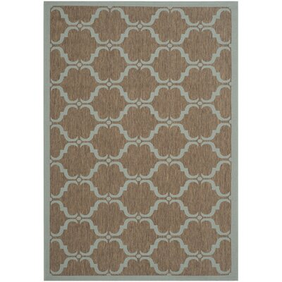 Octavius Brown/Aqua Indoor/Outdoor Area Rug Rug Size: Rectangle 9 x 12