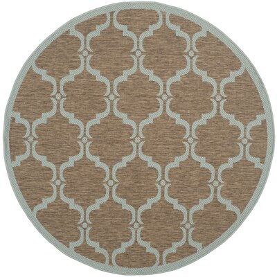 Octavius Brown/Aqua Indoor/Outdoor Area Rug Rug Size: Round 5