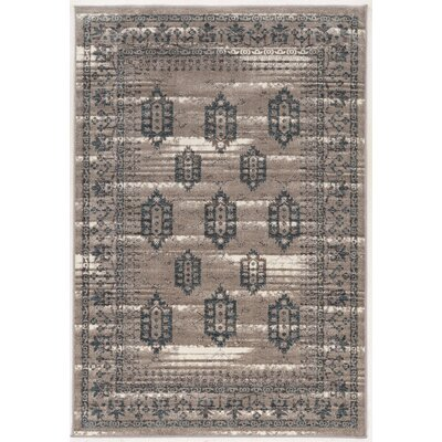 Claycomb Brown Area Rug Rug Size: Rectangle 5 x 76