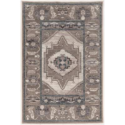 Coello Ivory/Gray Area Rug Rug Size: Rectangle 5 x 76