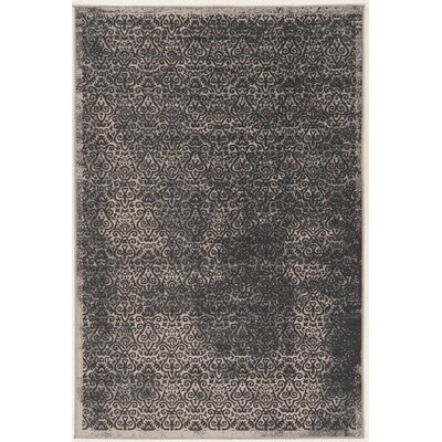 Coeur Beige/Gray Area Rug Rug Size: Rectangle 2 x 3