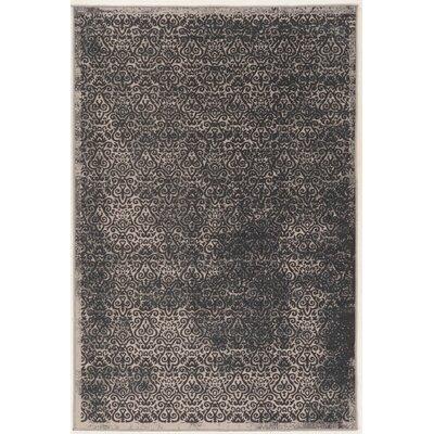 Coeur Beige/Gray Area Rug Rug Size: 5 x 76
