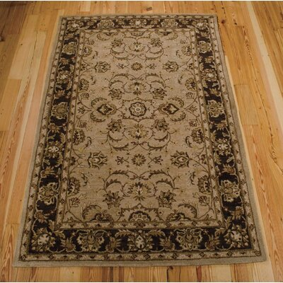 Cortese Taupe Area Rug Rug Size: 36 x 56