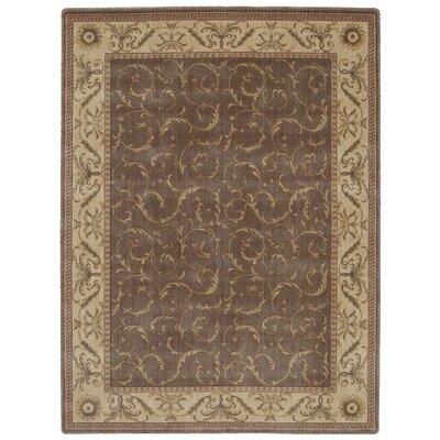Merton Khaki Area Rug Rug Size: 36 x 56