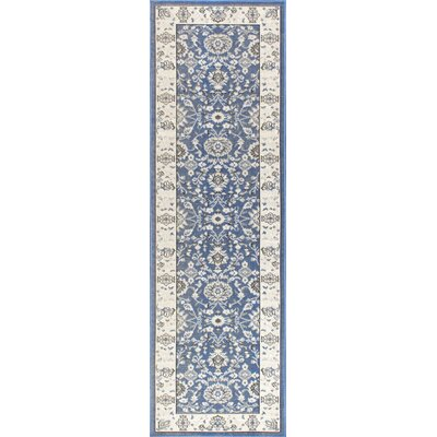 Myron Blue Indoor/Outdoor Area Rug Rug Size: Runner 2 x 76