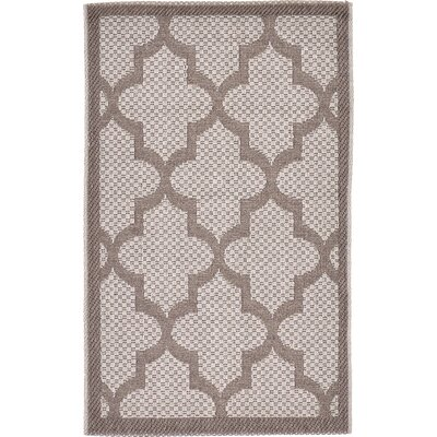 Perry Light Gray Outdoor Area Rug Rug Size: Rectangle 2 x 33